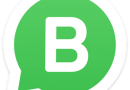 WhatsApp Business .APK Download